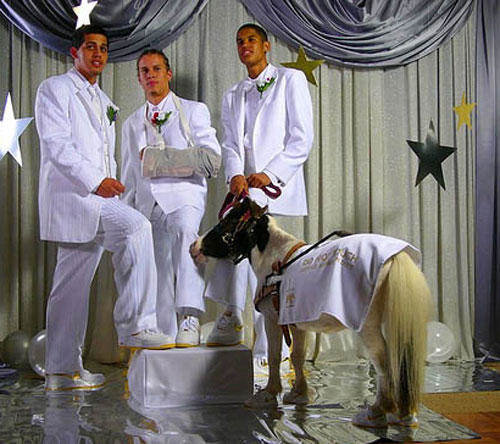funny-awkward-prom-pony.jpg