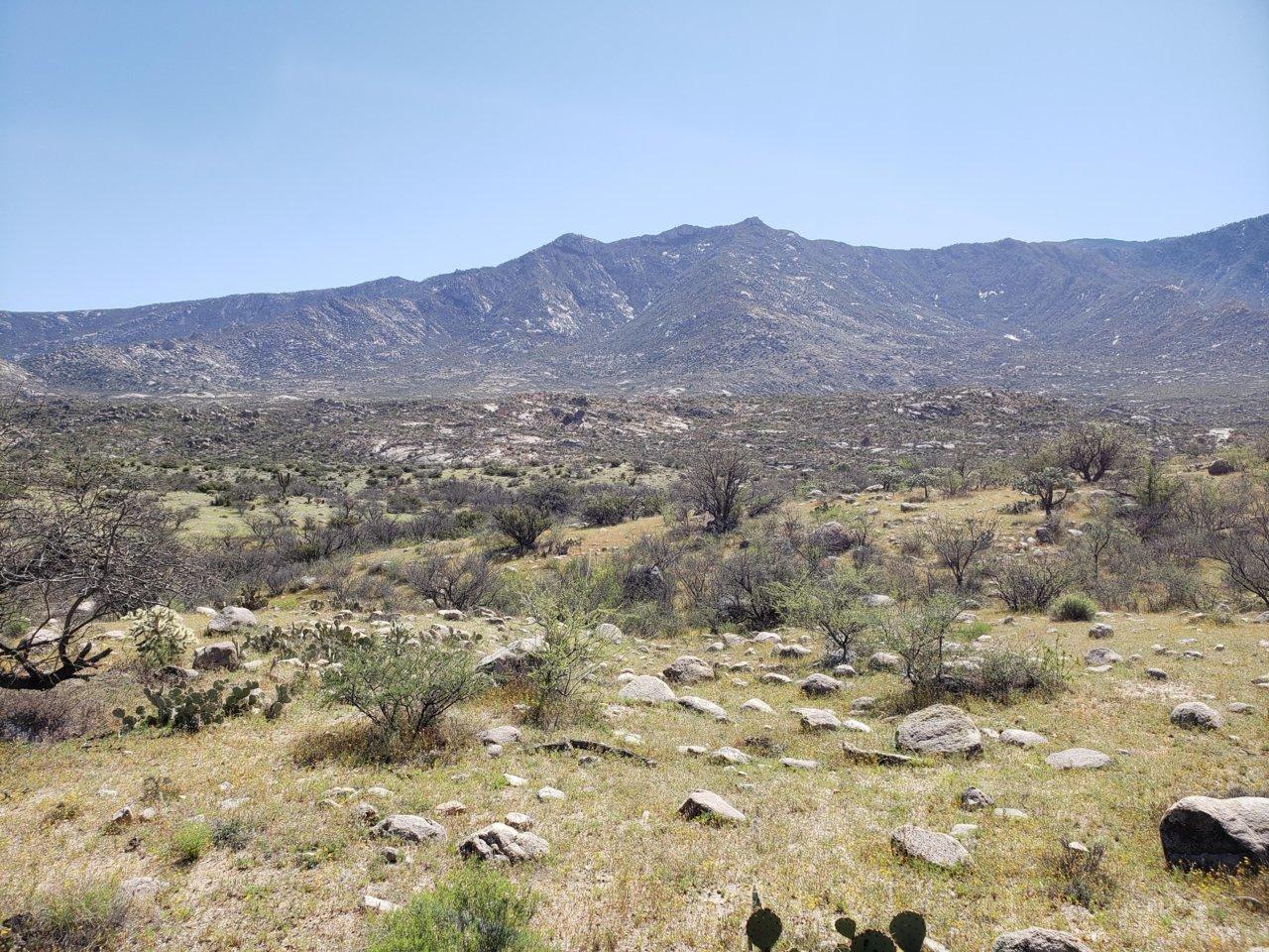 Hike pic 3.jpg