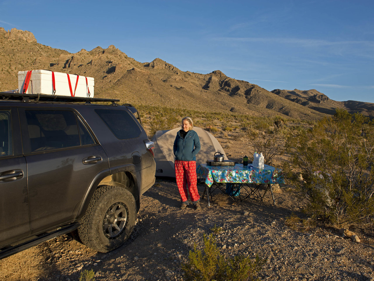 Mojave2156.jpg